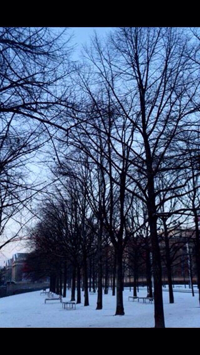 The park, Berlin 2014