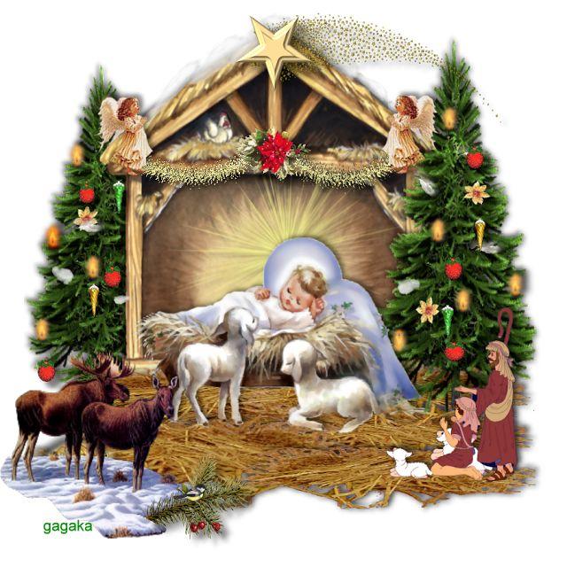 Zebra Testuje: Merry Christmas Everybody!