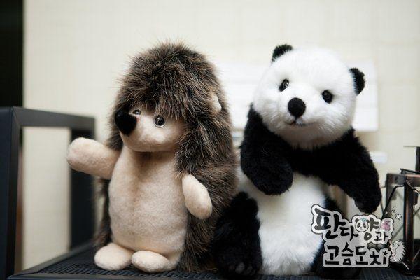 Panda & Puerco Espín