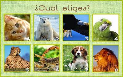 TEST DE PERSONALIDAD DE LOS ANIMALES