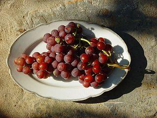 La uva es una fruta que contiene nutrientes que regeneran la piel. Por ello, el aceite obtenido de sus semillas puede ser un remedio casero para la eliminación de las estrías, en forma natural. El aceite de semillas de uva aporta a la piel vitaminas y otras sustancias nutritivas que provienen directamente de las uvas. […]