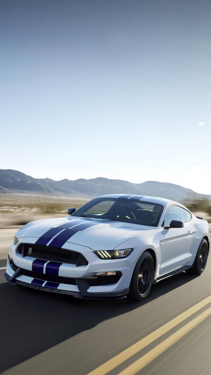 Mustang Shelby Ford Mustang Mustang Cars Ford Mustang