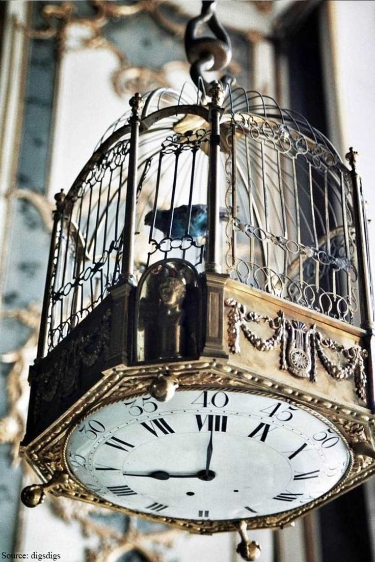 Timeless – Hanging from the high ceiling is an elite antique finished bird cage with the clock mechanism fixed at the base which is acting as a unique utility and design element. The detailing on the cage is intricate and so very pleasing.