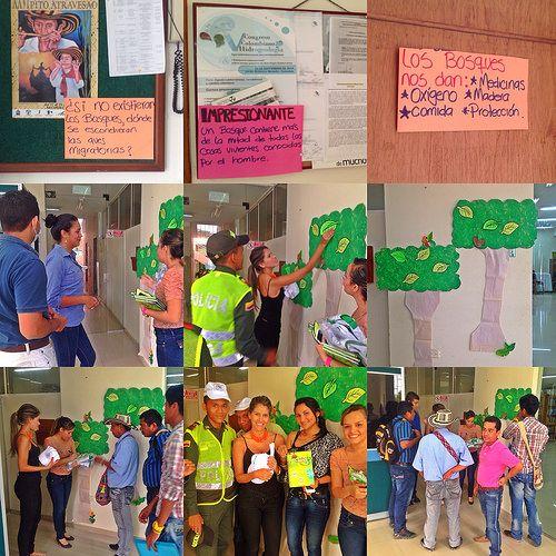 Celebración del Día Internacional de La Preservación de Los Bosques Tropicales