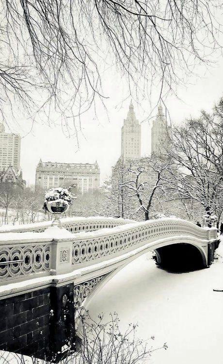 Bow Bridge in the snow - Central Park, New York City