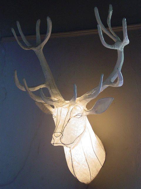 Reindeer (Stag)Trophy Head by Anthea & Michael Methven, via Flickr