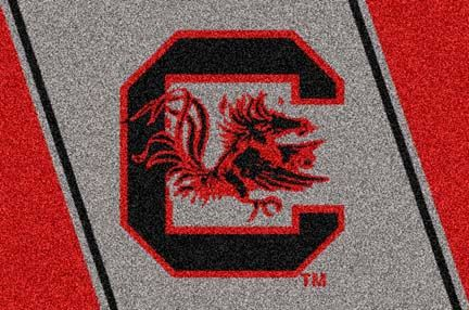 South Carolina Gamecocks 4' x 6' Team Door Mat (also other sizes)