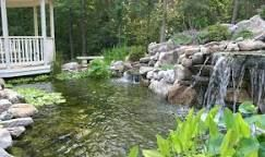 Pool Ponds