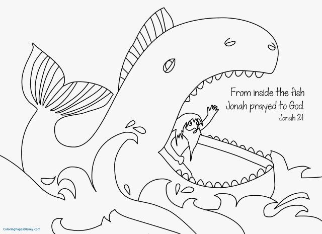 Excellent Picture Of Jonah And The Whale Coloring Pages In 2020 Whale Coloring Pages Bible Coloring Pages Sunday School Coloring Pages