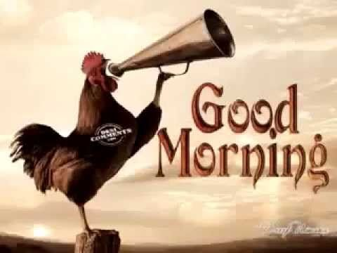 good morning wishes video - YouTube