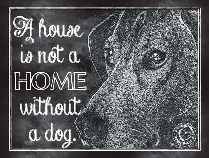 A house is not a home without a dog! lavagnetta 20x15 #lavagnettiamo@gmail.com
