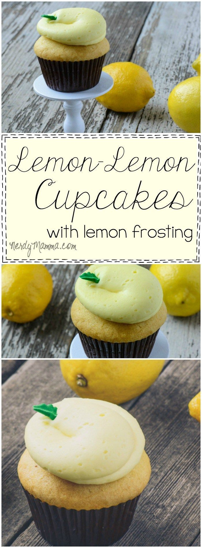 What a PERFECT summer cupcake recipe! I love lemon and these Double Lemon Cupcakes sound wonderful.