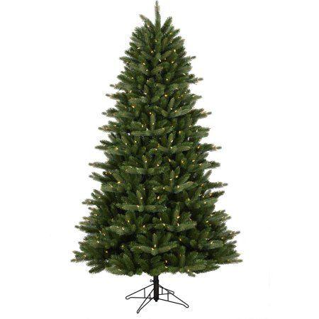 1000 Ideas About Douglas Fir Tree On Pinterest Pine