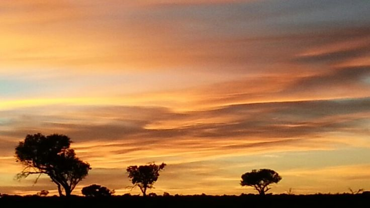 Beautiful Kalahari Sunrise