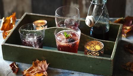 With the addition of American cream soda, this sloe #gin cocktail is very sweet and drinkable.