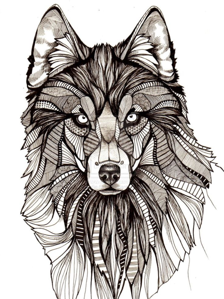 die besten 17 bilder zu gem lde auf pinterest tribal wolf tattoos m dchenzeichnungen und. Black Bedroom Furniture Sets. Home Design Ideas