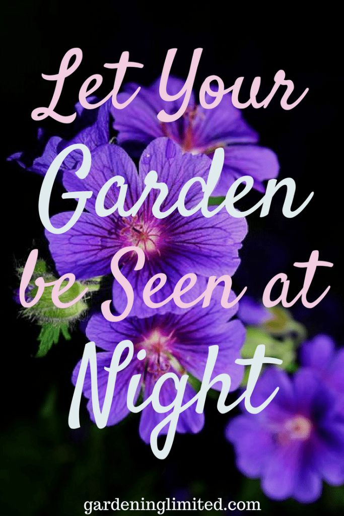 Want some ideas on how to add light to your gardens? Get some tricks and tips about gardens at night in this collaborative post. #gardening #gardens #gardeningtips #gardenideas