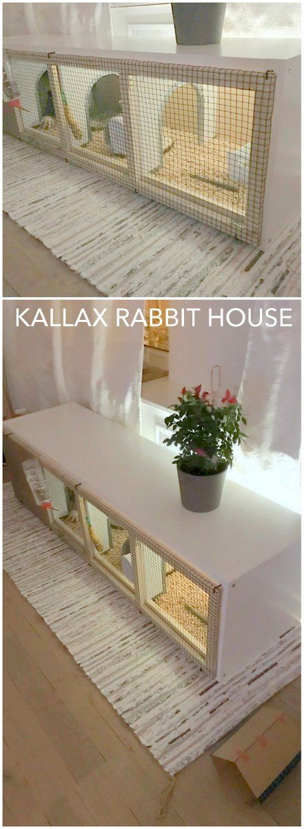 A house for bunny. http://www.ikeahackers.net/2017/03/kallax-rabbit-house.html ---- hartstikke leuk, maar doe er dan wel even een ren bij! Jongens, dit is echt veel te klein...