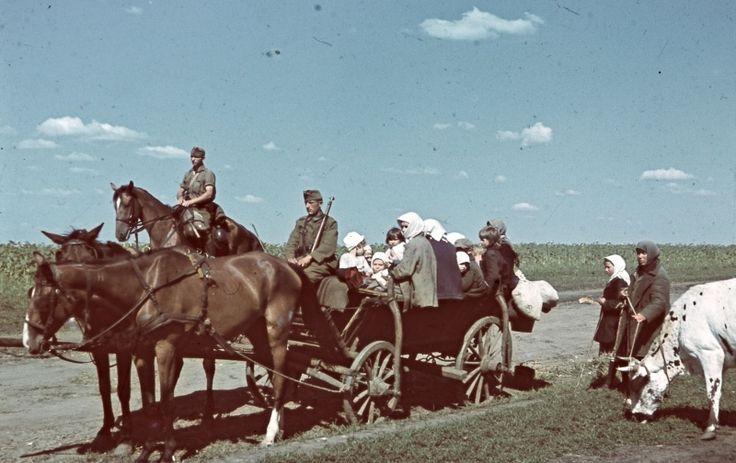 Венгерские солдаты везут на телеге советских мирных жителей вдоль кукурузного поля