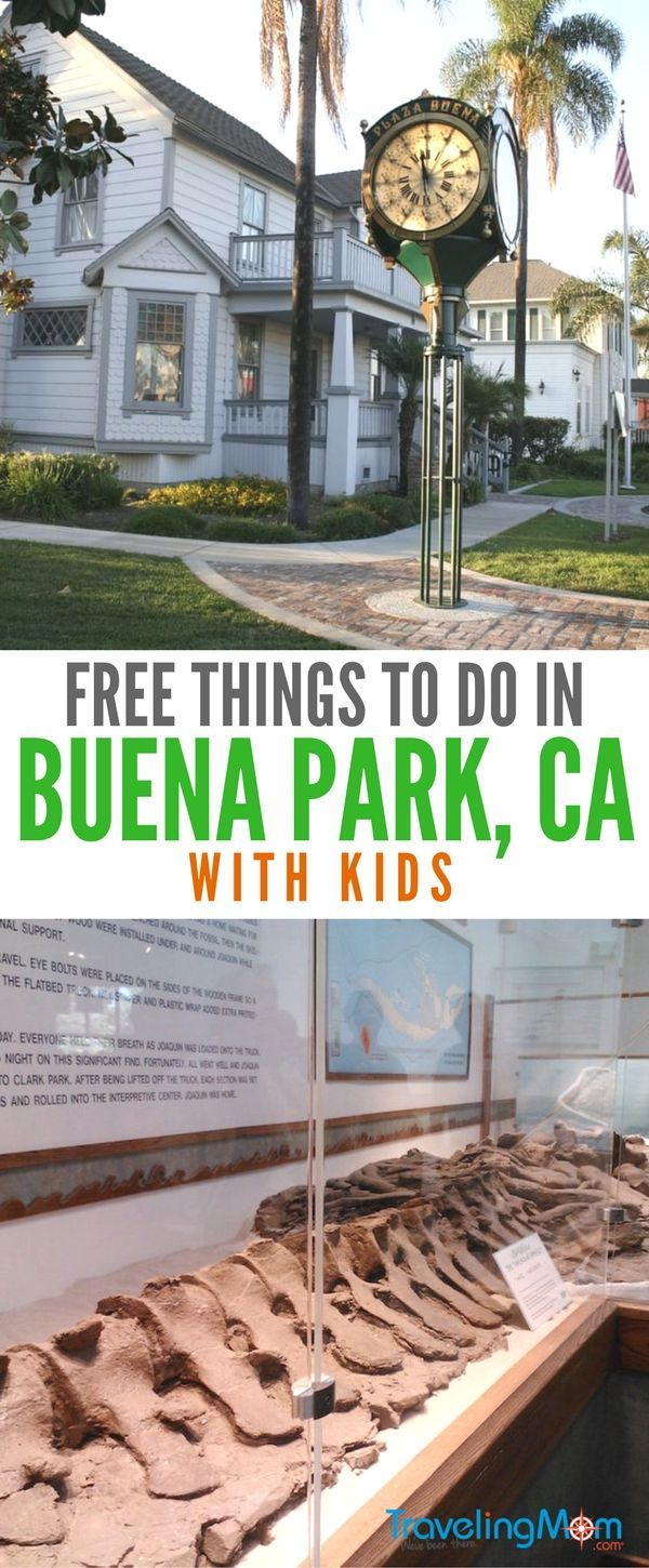 Free Things to Do in Orange County California with Kids  Buena Park