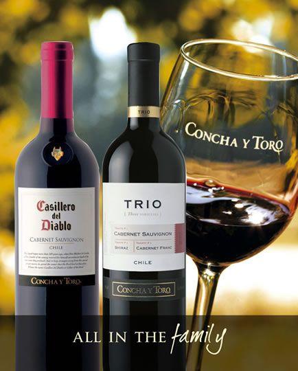 Las 10 Mejores Marcas de Vino Tinto   Todo sobre vinos y uvas