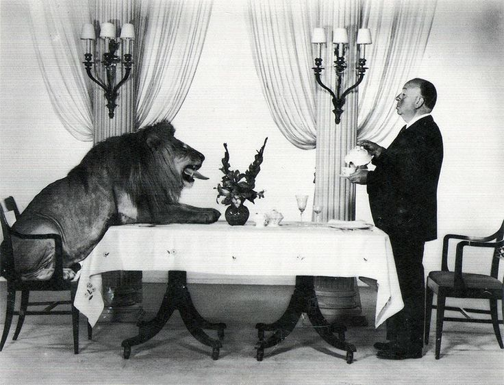 pretty-flvcko36:  jourdepluie91:  Alfred Hitchcock serving tea to Leo the Lion (the mascot for the Hollywood film studio MGM)   ★★