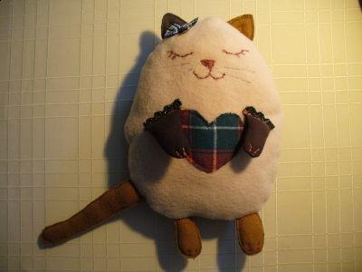 cat/kot