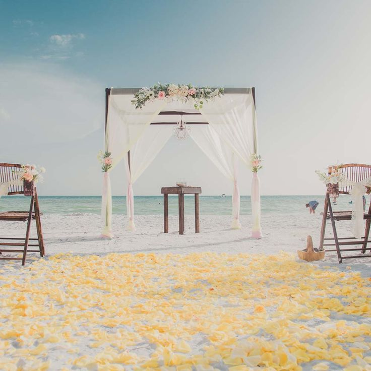 Let us create your dream Florida Beach Wedding or Beach Elopement in St. Pete Beach, Clearwater Beach, Sarasota and Tampa Bay area. Tie the Knot Seaside!