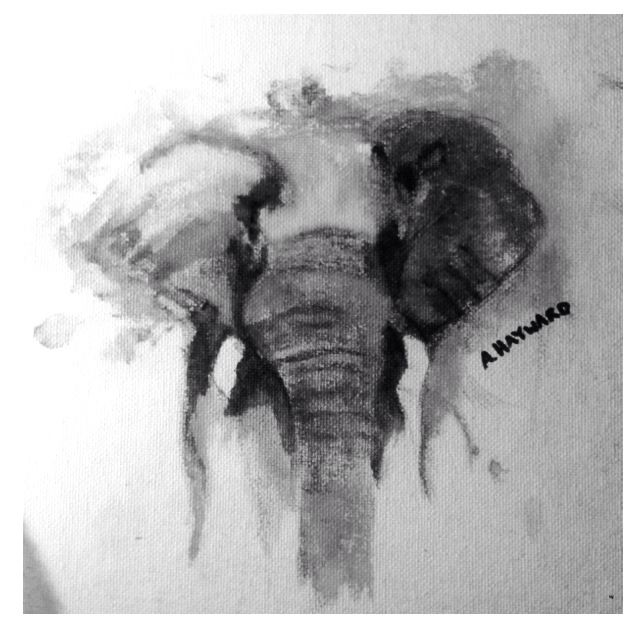 Elephant Water colour -fun easy, can personalize  Materials: water colour paint, water, small paint brush, canvas and creativity!