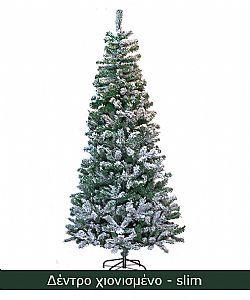 3Χριστουγεννιάτικα δέντρα σε πολλά μεγέθη και χρώματα