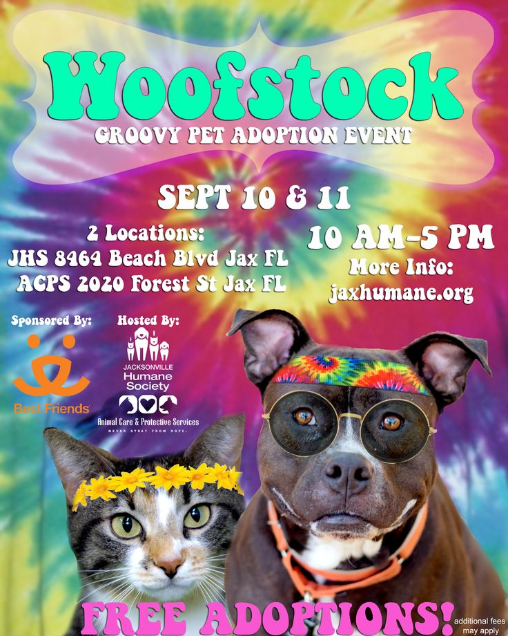 WoofStock | Jacksonville Humane Society Adoption Event