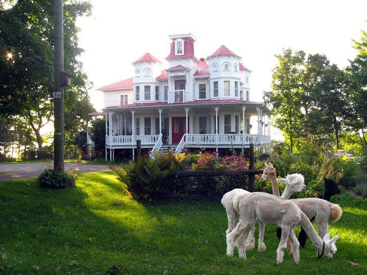 maison ermitage, hebergement, hotel, motel, gite, cote-du-sud, quebec, st-jean-port-joli, accueil