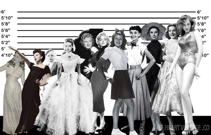 The height of Hollywood actresses: a star-studded lineup