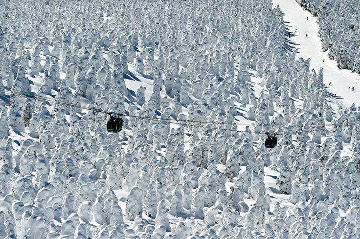 Echter Schnee am verschneitesten Ort der Erde