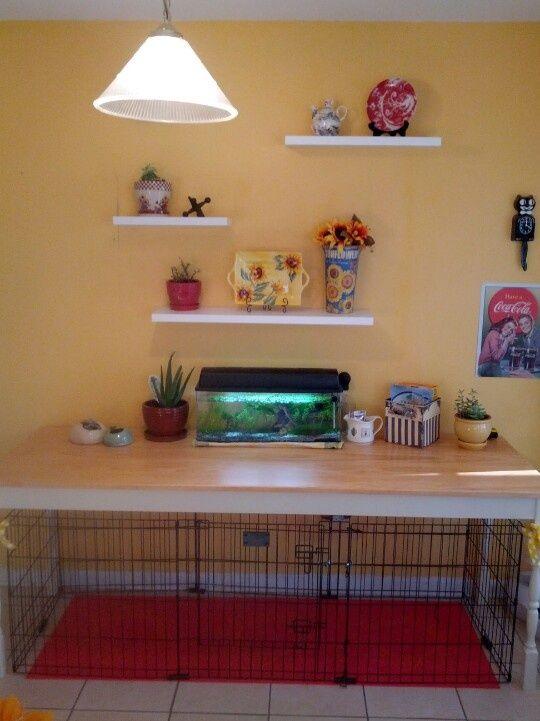 designer dog crate furniture room design plan. the 25 best dog crate table ideas on pinterest furniture cages and crates designer room design plan r