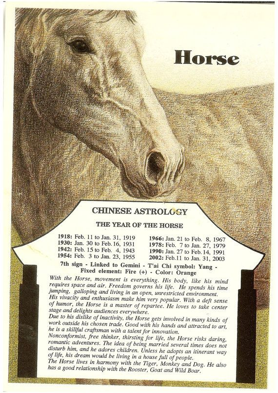 Zodiac Unlimited Chinese astrology postcard: Horse