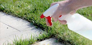 Plevel a tráva na chodníku nebo zahradě? Zbaví vás ho 1 ingredience z vaší kuchyně!