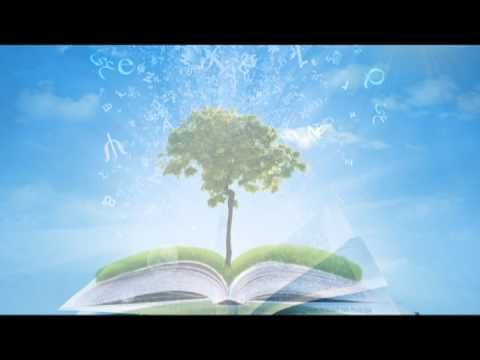 Study Music: Studying Music and Concentration Music for Exam Study Music to Study to - YouTube