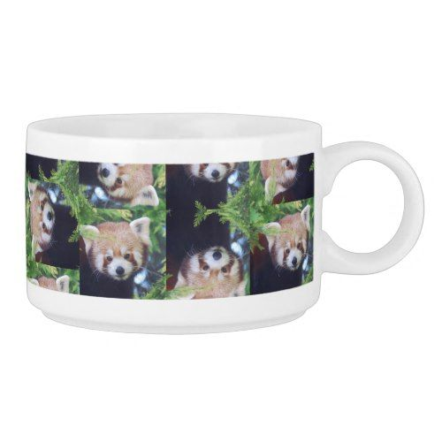 Red Panda Bowl