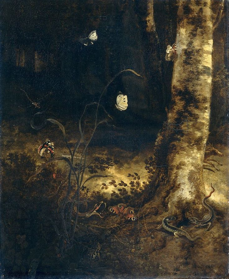 Otto Marseus van Schrieck,A forest floor with a snake, lizards, butterflies and other insects,1650-1678