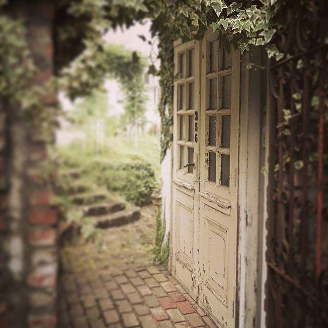 6/27  6/28 🌿closed 🌿  #cafe #igcafe #gardening #garden #shabychic #jankstyles #narita #brocante #カフェ #カフェ巡り #スイーツ #雑貨屋 #ブロカント #シャビーシック #ジャンクスタイル #ガーデン #ガーデニング #ナチュラルガーデン #ハンドメイド #ジブリ #ニドファ #成田 #千葉カフェ #niddefee #千葉アンティーク