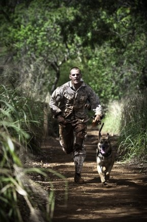 Putting them through their paces -Hawaiian Islands Working Dog Competition 2012 8th MP Brigade.