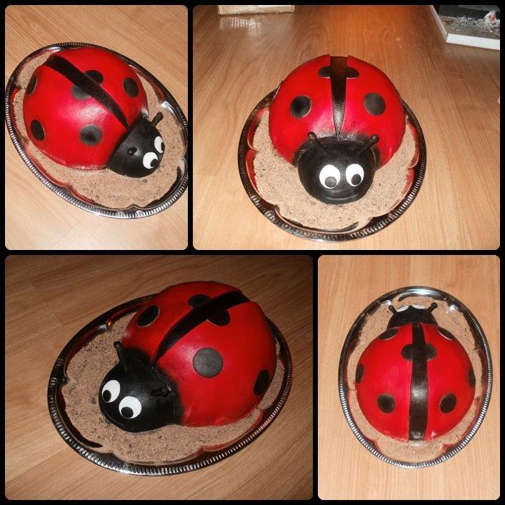 Ladybird cake No.3 - Katicabogár torta No.3