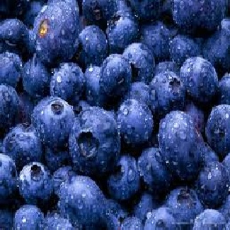 Full Fresh Burst of Blueberry flavour with a smooth sweet aftertaste.