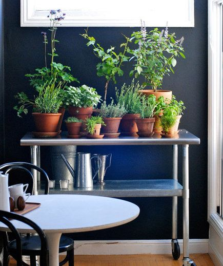 Designate a nook or corner in your house as your indoor garden—just make sure it's a spot that gets plenty of light. Here, an industrial metal cart is used to hold potted plants and watering cans. You can do something similar with a bookshelf or small console table.