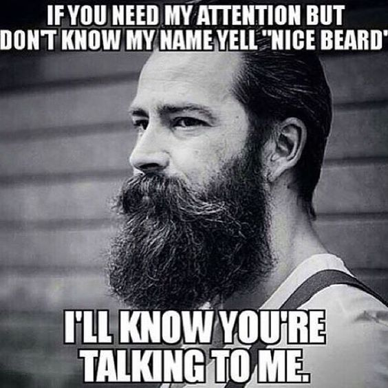 We Heart Beards (@WeHeartBeards) | Twitter | this is the correct way to greet all those lovely scruffed men i've been seeing lately