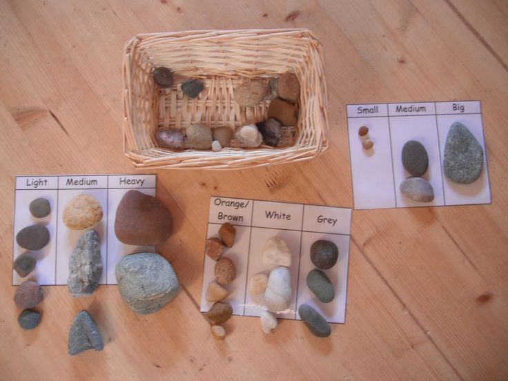 """Matching & classification with natural materials from The Hundred Languages of Children ("""",)"""
