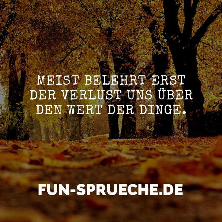 Meist belehrt erst der Verlust uns über den Wert der Dinge. http://www.fun-sprueche.de/meist-belehrt-erst-der-verlust-uns-ueber-den-wert-der-dinge-1940