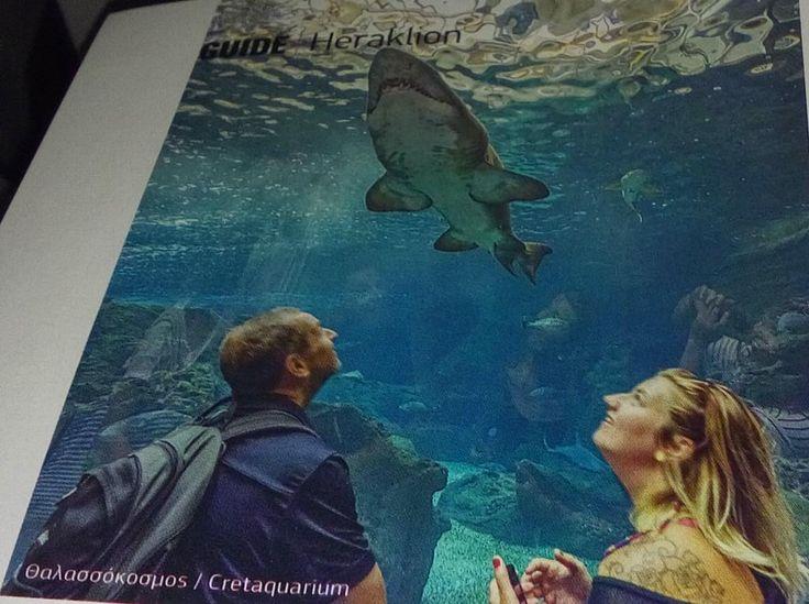 Το @Cretaquarium στο περιοδικό #Blue της @aegeanairlines! @VisitGreecegr @destination_c @DiscoverGRcom .@gtpgr