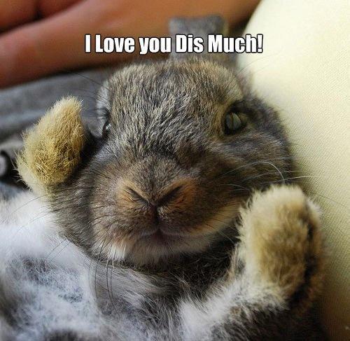 Soooooo sehr liebe ich dich! - Win Bild | Webfail - Fail Bilder und Fail Videos